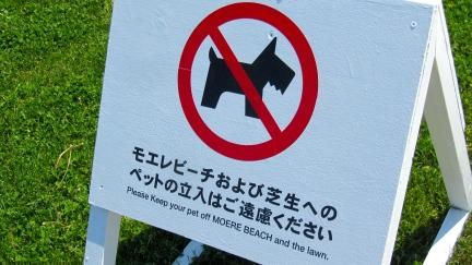 designKULTUR - Isamu Noguchi - Moerenuma Park Sapporo - Moere Beach - 7