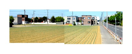 designKULTUR - Sapporo 2013 - Field Near Worker Housing - 3