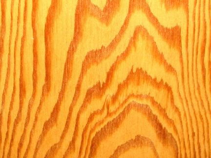 designKULTUR – The Plywood Cottage – Elements –3:4-inch Douglas Fir Plywood - 2