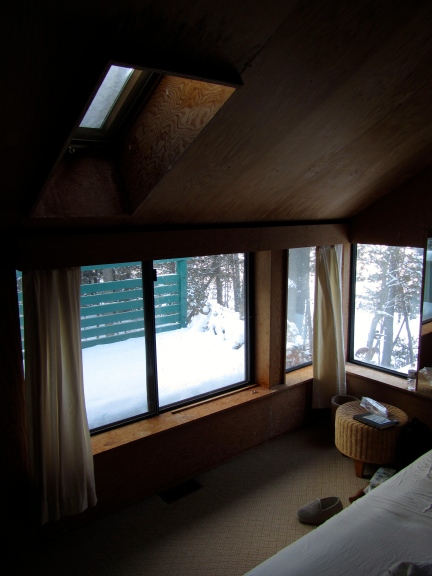 designKULTUR – The Plywood Cottage – Elements –3:4-inch Douglas Fir Plywood – 6