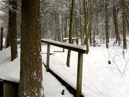 designKULTUR – The Plywood Cottage – Winter – Exterior – 4