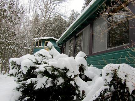 designKULTUR – The Plywood Cottage – Winter – Exterior – 5